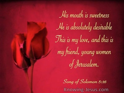 The Song of Solomon 5-16 He Is Absolutely Desirable (gold)
